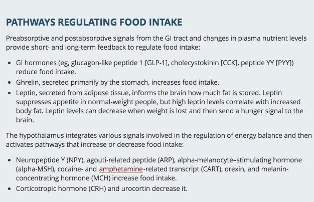 https://aceamino.com/wp-content/uploads/2018/10/Food-Intake-Regulation-Pathway.png
